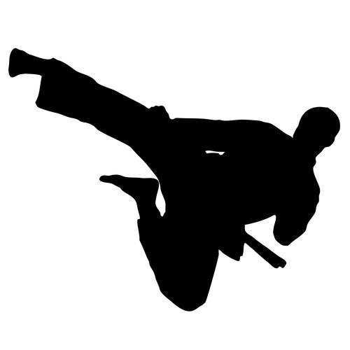 jujitsu pearland