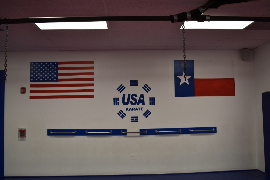 USA Karate Houston flags