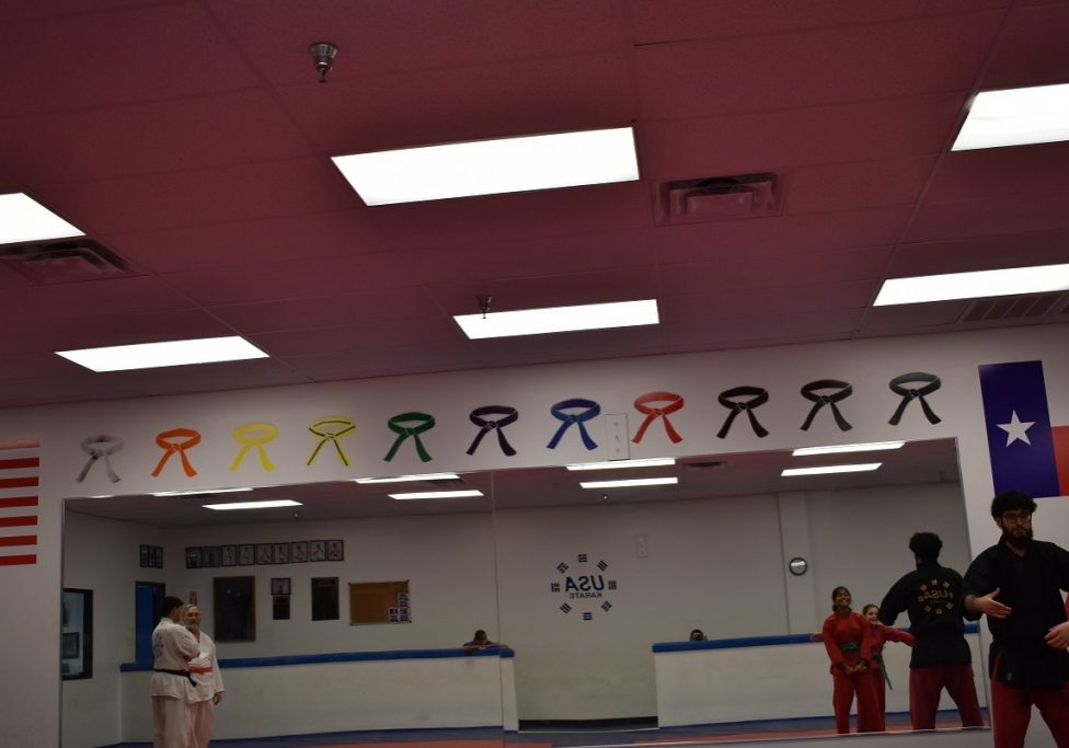 usa karate pearland training